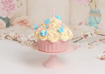 Cake Smash, The Cake, A&T Gancarz Photography